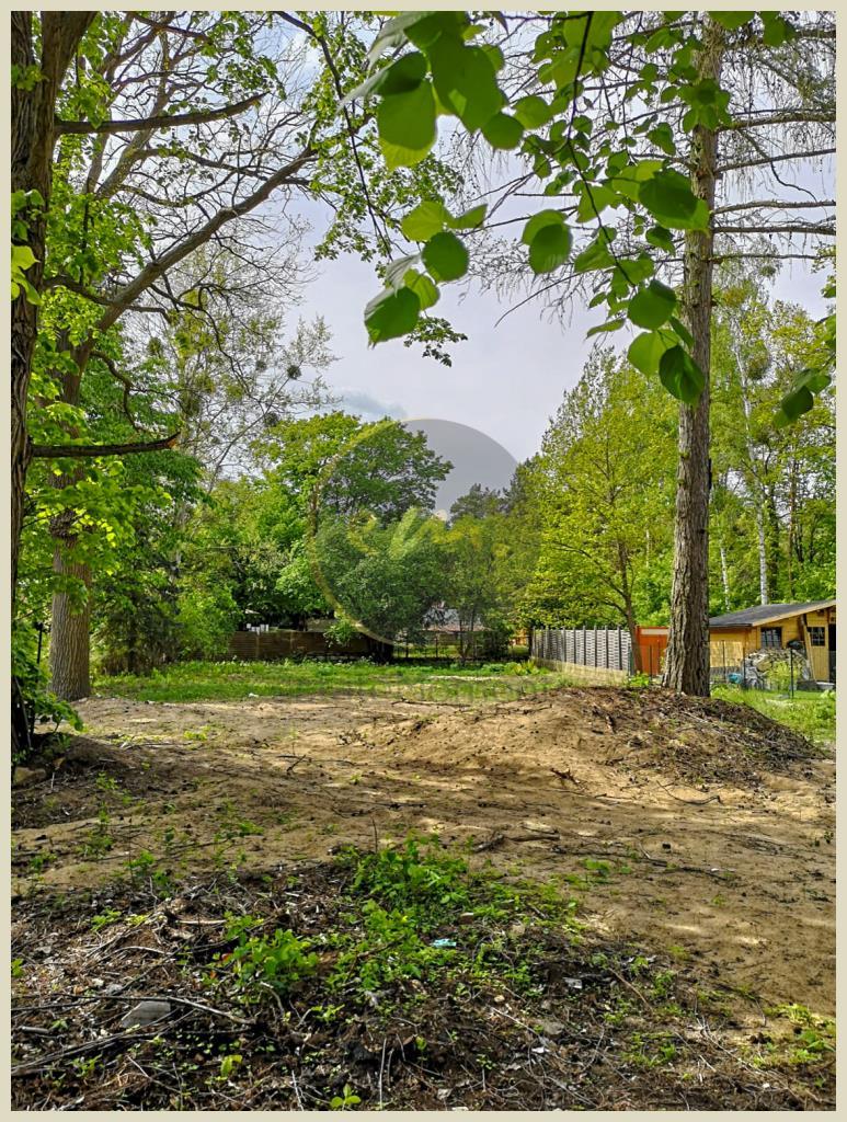 Blick zur Grundstücksrückseite