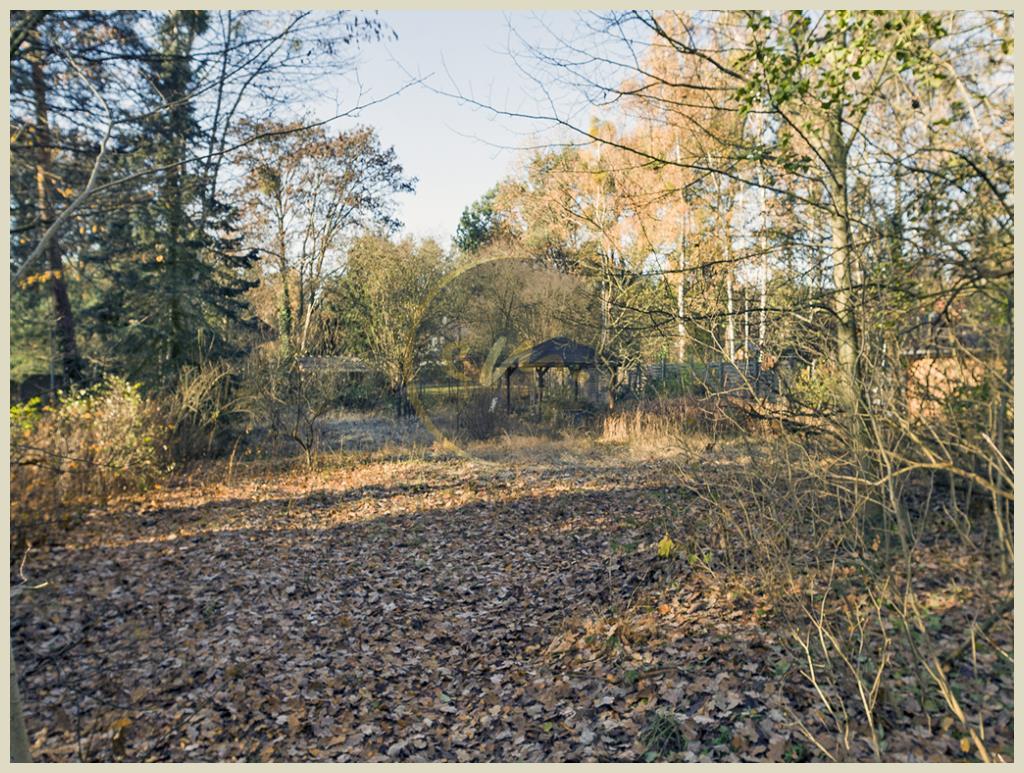 Falkensee - Bauträgerfrei, offene Bebauung, gewachsenes Wohngebiet, ruhige Waldrandlage, großzügiges Grundstück!