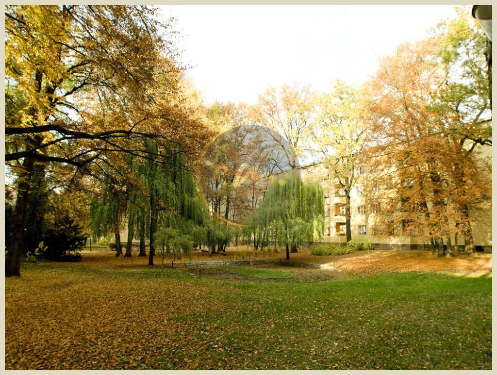 Berlin - 'Kissingenviertel' - Toller Schnitt mit Grünblick