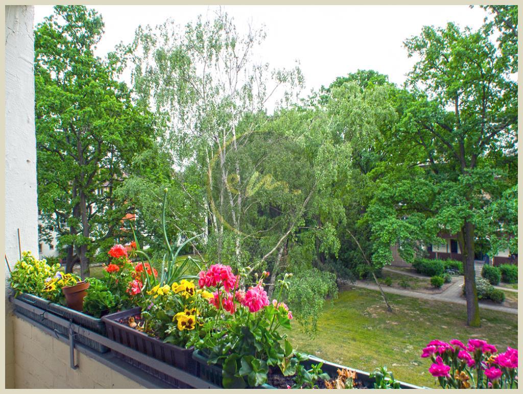 Berlin - Berlin-Siemensstadt: Helle Etagenwohnung, Balkon mit Südausrichtung zum Gemeinschaftsgarten